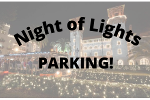AylasAcres_Night_of_Lights