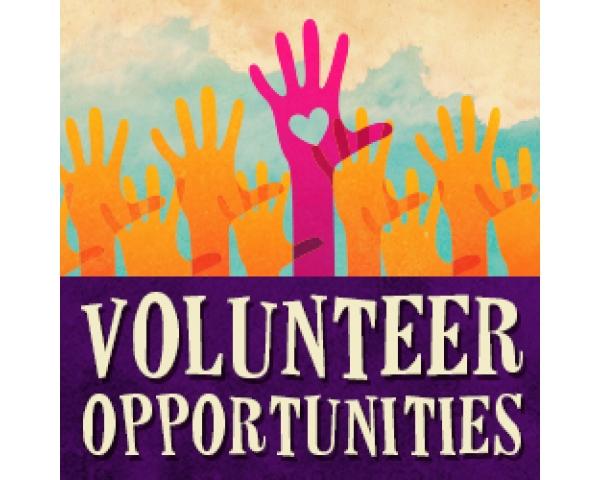 volunteer_hands 2