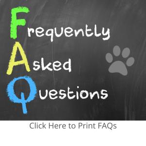 FAQ Fostering Image