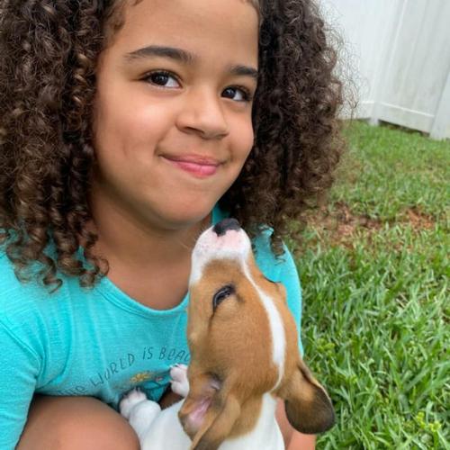 Foster-Adoption3